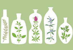 Poznaj 9 ziół leczniczych, które możesz uprawiać w mieszkaniu