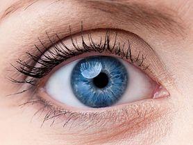 Odkryto mikrobiom oka. To bakterie chronią nasze oczy przed chorobami