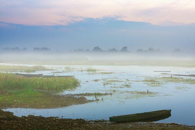 Susza w polskiej Amazonii. Nad Narwią modlą się o śnieg