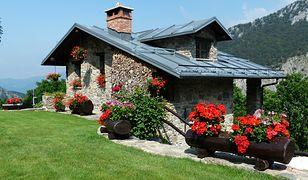 Jak ozdobić ogród na lato?