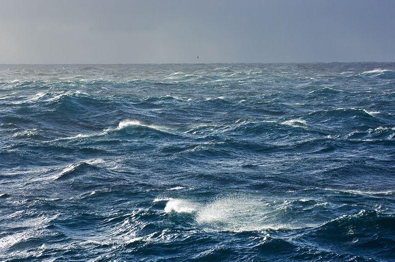Unosi się w powietrzu. Wstrząsające odkrycie nad Oceanem Atlantyckim