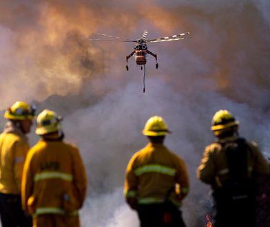 Los Angeles. W Kalifornii wybuchł kolejny pożar