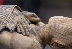 Niezwykłe odkrycie w Egipcie. Archeolodzy weszli do grobowca sprzed co najmniej 3,5 tys. lat