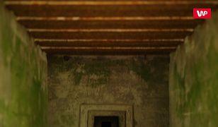 O krok od bursztynowej komnaty. Przełomowe odkrycie w Mamerkach