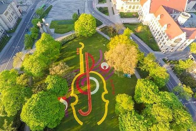 W parku przed poznańską operą usypano dywan z setek tysięcy główek tulipanów