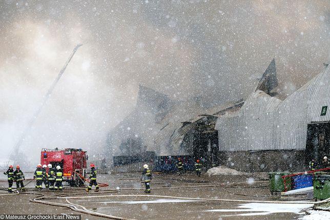 Pożar hali na Białołęce. Prokuratura wszczyna śledztwo