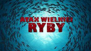 Atak wielkiej ryby