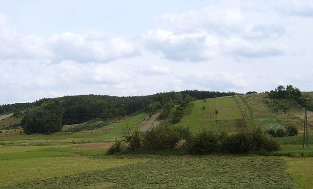 Roztocze Środkowe; okolice wsi Jacnia