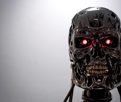 Endoszkielet Terminatora, model T-800, który wystąpił w filmie Terminator 2: Dzień Sądu (1991)