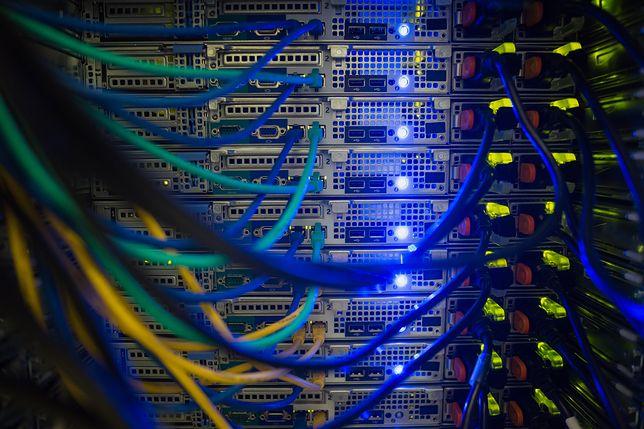 Podejrzani stworzyli specjalne oprogramowanie, które pozwoliło im wykradać dane informatyczne i osobowe.