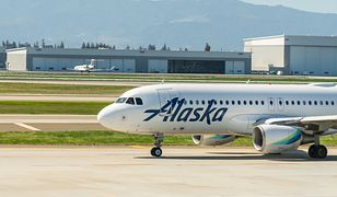 Wypadek na lotnisku na Alasce. Samolot uderzył w niedźwiedzia