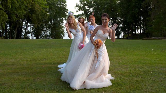"""""""Cztery wesela"""": czy takie wesela kochają Polacy?"""