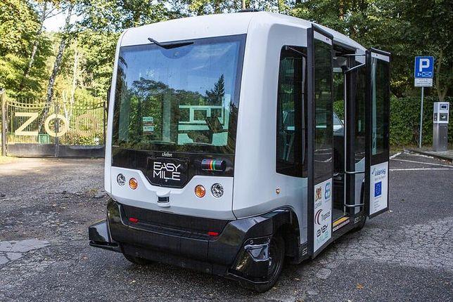 We wrześniu 2019 roku autonomiczny bus woził chętnych drogą dojazdową do Gdańskiego Ogrodu Zoologicznego.