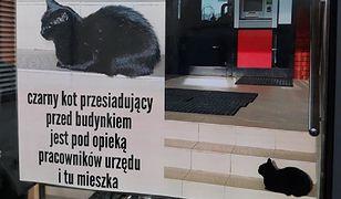 Piaseczno. Informacja o mieszkance urzędu niedawno pojawiła się tuż przy wejściu do budynku