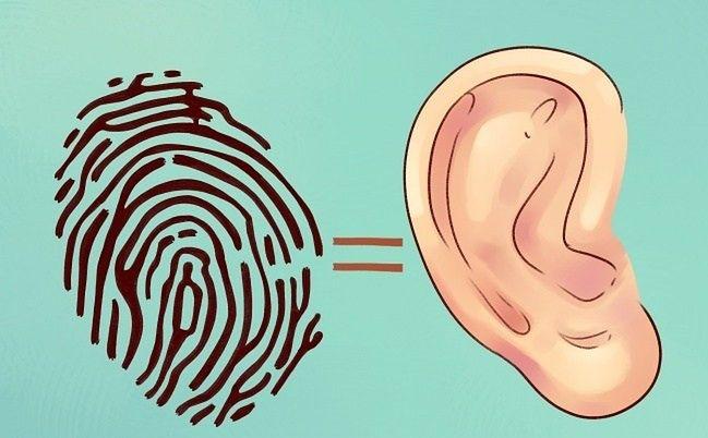 Uszy, jak odcisk palca