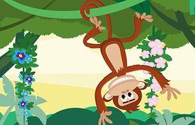 Kolorowa animacja! Fik mik małpka mała