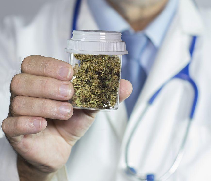 Badania nad właściwościami medycznej marihuany