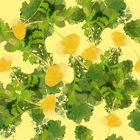 Rzepa - zdrowe, ale niedoceniane warzywo. Co można z niej przygotować?