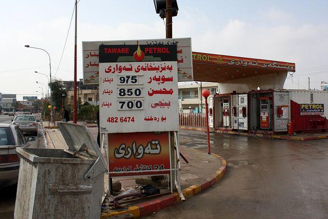 Ceny paliw na świecie. Jak wypada Polska na tle państw z najtańszą benzyną?