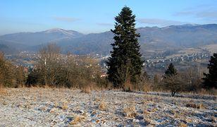 Prognoza pogody na dziś - 17 listopada. Coraz chłodniej. Może spaść pierwszy śnieg
