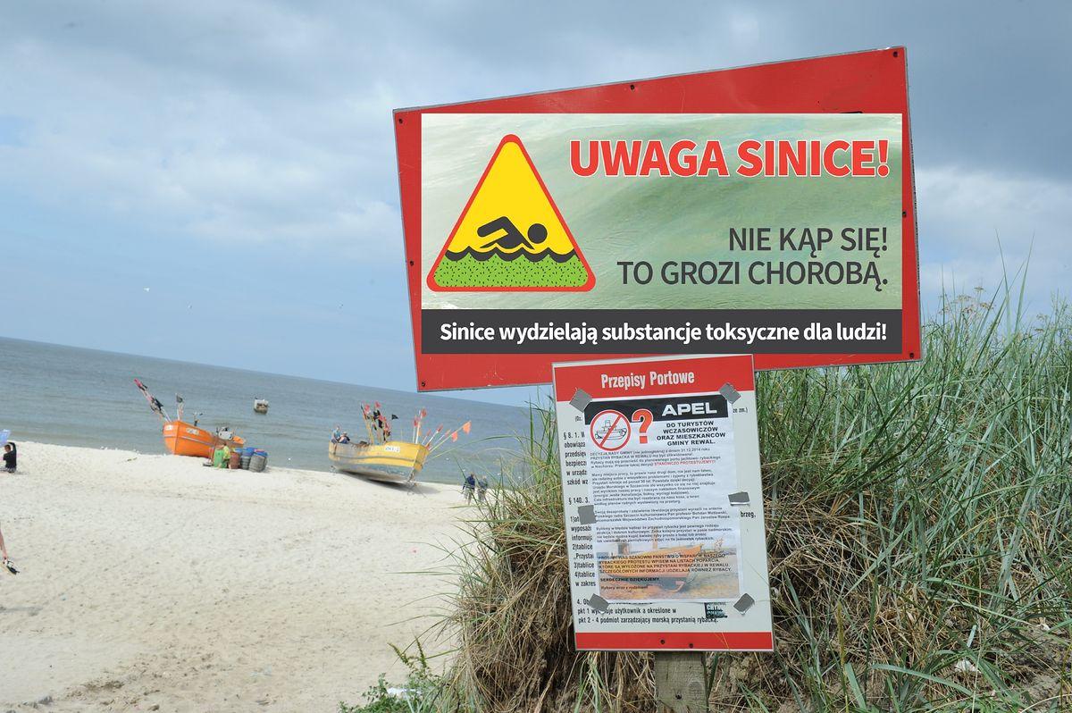 Sinice w Bałtyku. Zamknięto kilkanaście kąpielisk nad polskim morzem