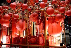 Chiński nowy rok: rok świni rozpoczął się 5 lutego. Sprawdzamy, jakie decyzje warto podjąć w najbliższym czasie