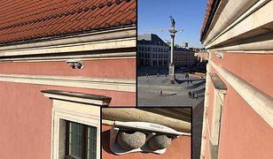 Warszawa. Zamek Królewski i nowe gniazda dla jaskółek