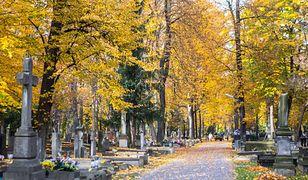Warszawa. Dodatkowe autobusy i tramwaje zawiozą na cmentarze