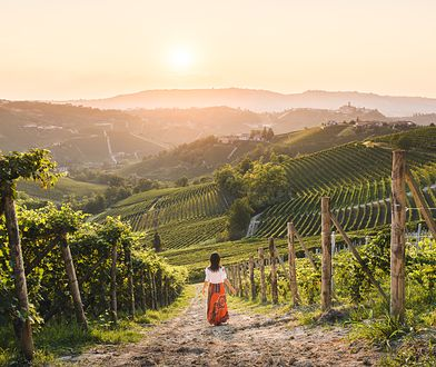 Piemont – nie tylko barolo