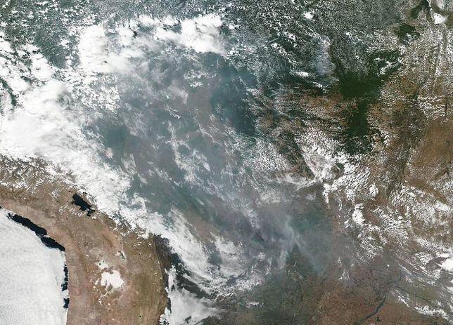 Bezprecedensowe pożary lasów od Amazonii po Arktykę. A to dopiero początek