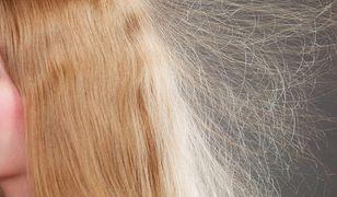Problem z naelektryzowanymi włosami nasila się zimą