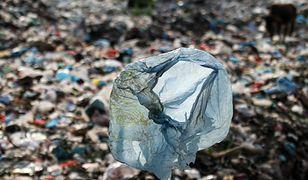 """Niemieckie media: """"Śmieciowa mafia"""" wywozi odpady do Polski"""