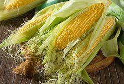 Znamiona kukurydzy - właściwości zastosowanie. Moc ukryta w wąsach