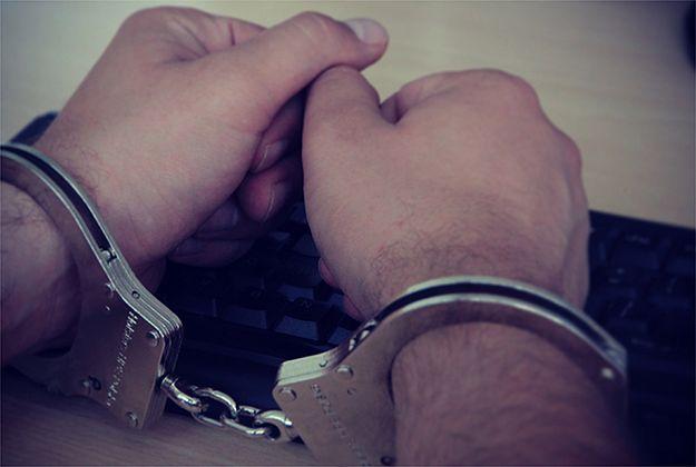 Morderca kotów z Zabrza trafi do więzienia. To pierwszy taki wyrok w historii