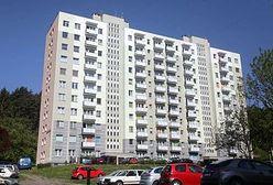 Eksperci: trwa ożywienie na rynku mieszkaniowym