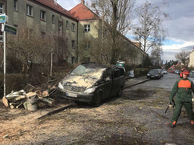 """Wichury nad Polską. Orkan """"Sabina"""" zbiera żniwo. Meteorolodzy ostrzegają"""