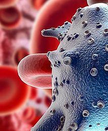 Będzie polska ektoina z bakterii dla medycyny i kosmetyki