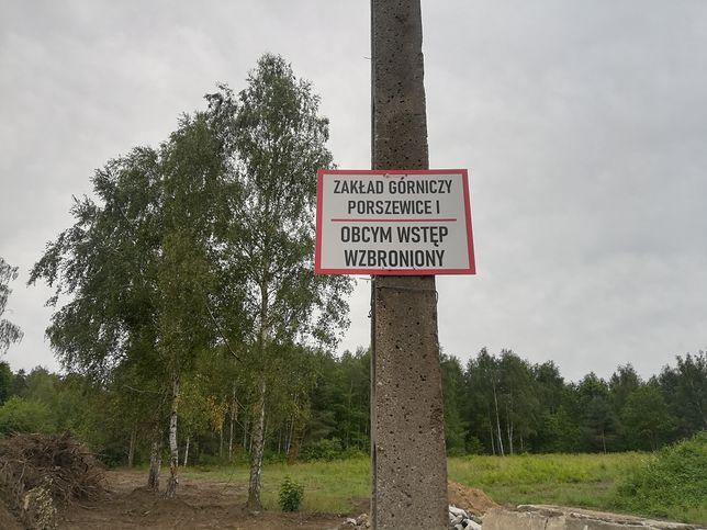 Porszewice koło Łodzi. Na terenach archidiecezji łódzkiej powstaje kopalnia piasku. Niedawno był tu las.