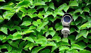 Dobrą kamerę FULL HD możesz kupić już za około 500 zł.