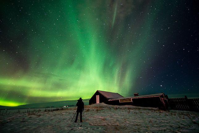 Zakochał się w zorzy polarnej. Gotowy jest przebyć tysiące kilometrów, by ją zobaczyć