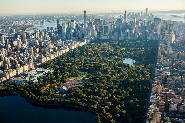 Będąc w Nowym Jorku nie sposób ominąć Central Parku