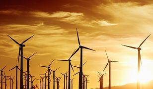 Elektrownia wiatrowa pozwoli zaoszczędzić