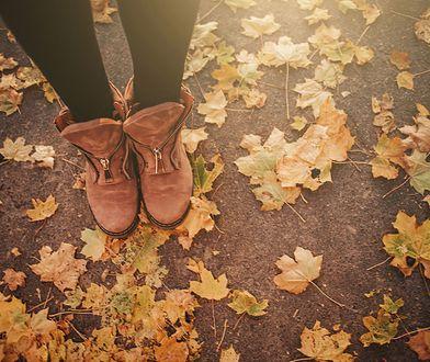 Zamszowe botki jesienią - podpowiadamy, jak je czyścić