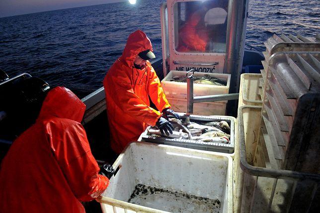 Rybacy mówią, że ryb w Bałtyku jest coraz mniej