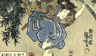 W Japonii brakuje tradycyjnych wojowników ninja