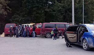 """To już koniec działalności """"mafii rumuńskich grzybiarzy"""". Zwinęli obóz po interwencji straży leśnej."""
