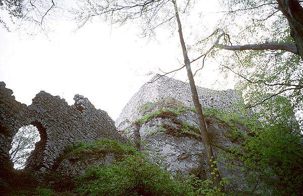 Szczątki ludzkie odkopano na zamku w Smoleniu