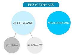 Przyczyny AZS - grafika