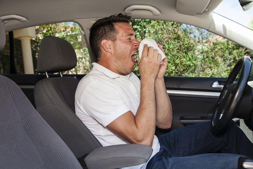 Alergia i zatrucia