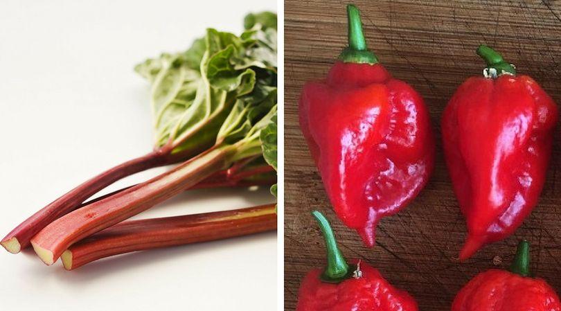 Spożywanie niektórych potraw, niesie ze sobą ryzyko utraty życia lub uszczerbku na zdrowiu